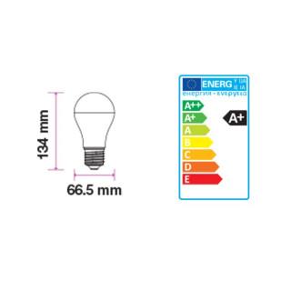 V-TAC VT-215 Lampadina LED E27 15W Bulbo A66 200° -  Disegno Tecnico