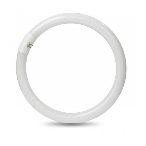 http://www.shopmancini.com/8417-thickbox_default/lampada-led-circolina-g10q-t9-20w-4000k-life-neon-tondo-circolare-32w.jpg