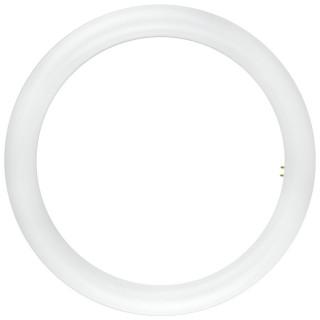 Circolina LED T9 G10Q 20W Diametro 30CM LED EPISTAR