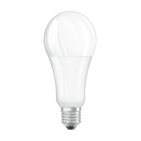 BOT LIGHTING Lampadina LED E27 20W Bulbo A67